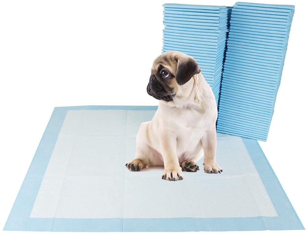 training pad for dog owners